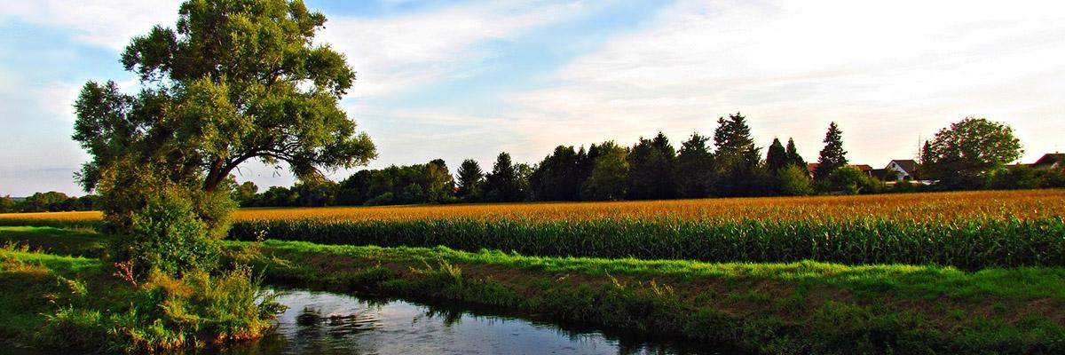landwirtschaftskammerbremen-fachausschuesse-1200x400px