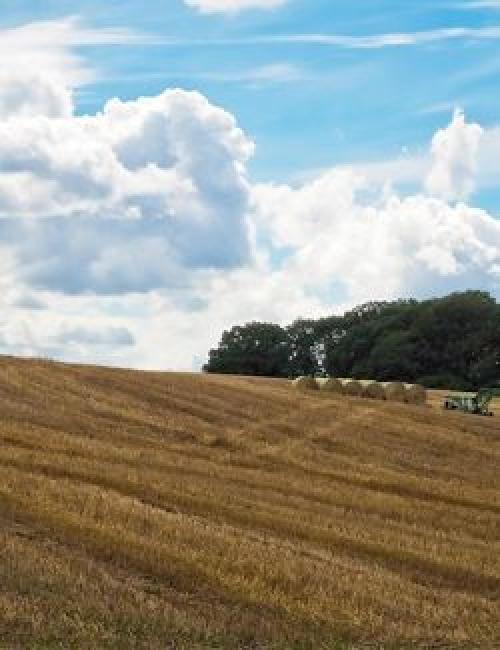 Stoppelfeld mit Strohballen © Landwirtschaft Bremen